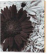 B/w Flower Wood Print by Ankeeta Bansal
