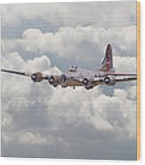 B17- Yankee Lady Wood Print