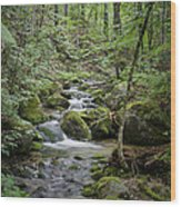 Babbling Baxter Brook Wood Print