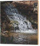 Babbling Brook 2013 Wood Print