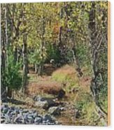 Babbling Brook IIi Wood Print