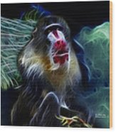 Baboon 4239 - F Wood Print