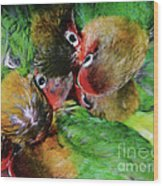 Baby Bird Nest In Hong Kong Bird Market Wood Print