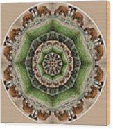 Baby Bison Mandala Wood Print