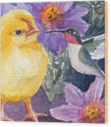 Baby Chick And Hummingbird Wood Print