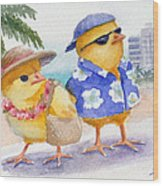 Baby Chicks In Honolulu Hawaii Wood Print