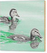 Baby Ducklings Wood Print