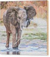 Baby Elephant Spraying Water Wood Print