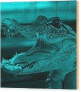 Baby Gator Turquoise Wood Print