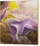 Baby Hydrangeas Wood Print