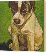 Baby Jack Russel Wood Print