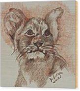 Baby Lion Wood Print