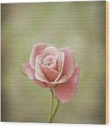 Baby Pink Wood Print