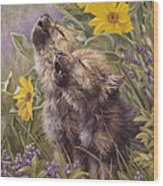 Baby Wolves Howling Wood Print by Lucie Bilodeau