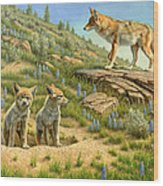 Babysitter  -  Coyotes Wood Print by Paul Krapf
