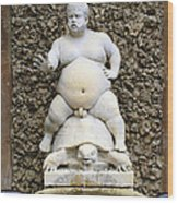 Bacchus Fountain Wood Print