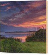 Back Bay Dusk Wood Print