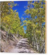 Back Country Road Take Me Home Colorado Wood Print