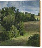 Back Pasture Wood Print