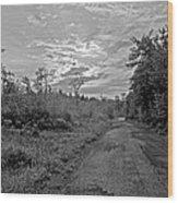 Back Road At Sunset Pocono Mountains Pennsylvania Wood Print