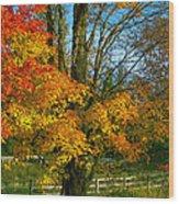 Back Road Beauty Wood Print