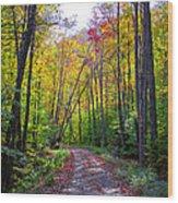 Back Road In The Adirondacks Wood Print