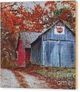 Back Road Treasures  Wood Print