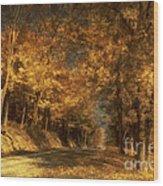 Back Roads Wood Print