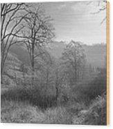 Back Roads Of Washington II Wood Print