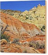 Back Roads Utah Wood Print