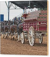Back View Anheuser Busch Clydesdales Pulling A Beer Wagon Usa Wood Print