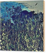 Back Yard Sky Wood Print