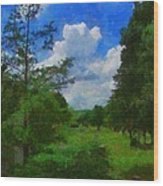 Back Yard View Wood Print