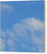 Backlit Seagull Wood Print