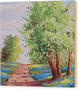 Backroad Bluebonnets Wood Print