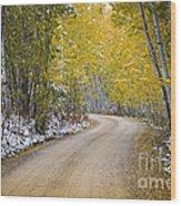 Backroads Of Autumn Wood Print
