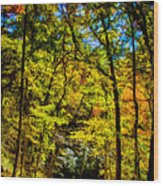 Backroads Of The Great Smoky Mountains National Park Wood Print