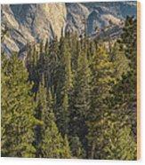 Backroads Of Yosemite Wood Print