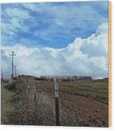 Backroads- Telephone Poles- And Barbed Wire Fences Wood Print
