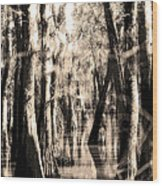 Backwater Cajun Country Wood Print
