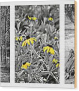 Backwoods Escape Triptych Wood Print