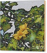 Backyard Bloom Wood Print