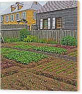 Backyard Garden In Louisbourg Living History Museum-1744-ns Wood Print