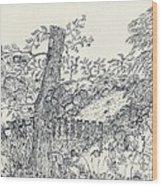 Backyard Peace Wood Print