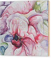 Backyard Peony Wood Print by Kelly Johnson