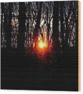 Backyard Sunset 2 Wood Print