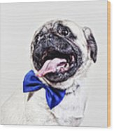 Bacon The Pug Wood Print