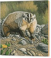 Badger   Wood Print
