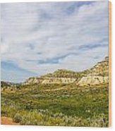 Badlands 38 Wood Print