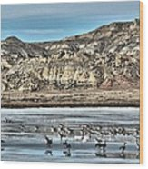 Badlands Spring Thaw Wood Print